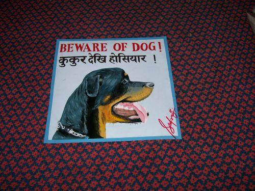 Rottweiler.sufraj_7