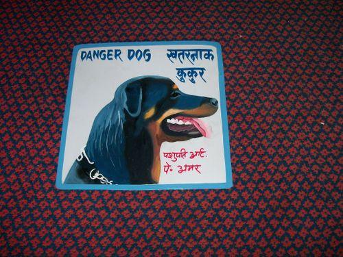Rottweiler.amar_5