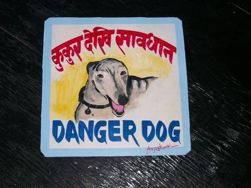 Arjun.greyhound