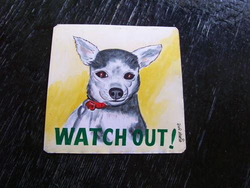 Chihuahua.hariPrasad