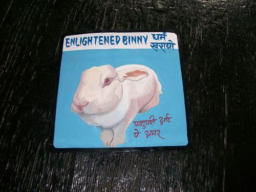 Bunny.Amar_36