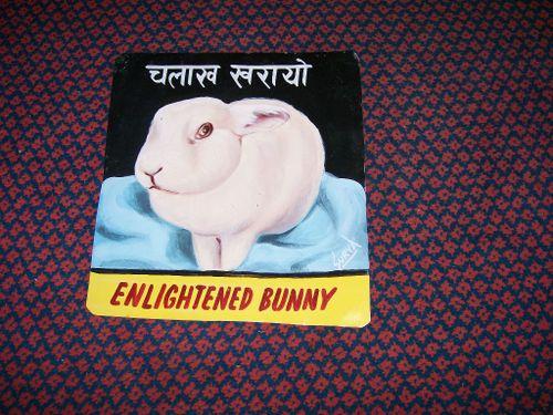 Bunny.Sabala_37