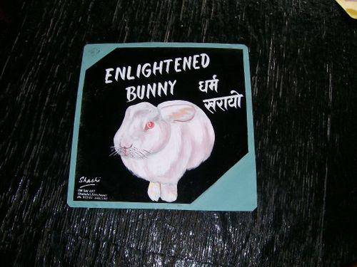 Bunny.Shashi_38