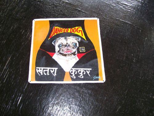 Pug.Sagar_33