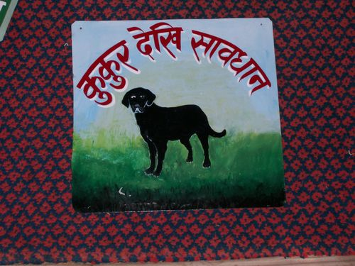 Shree.blackdog