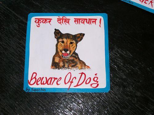 Sachin.shepherd2