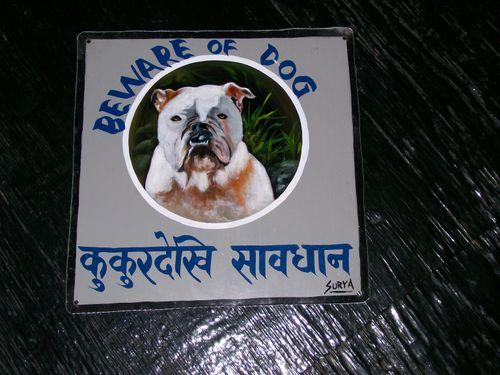 Surya.bulldog