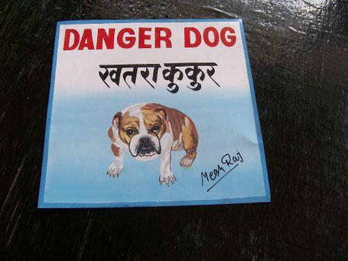 Bulldog.MeghRaj_40