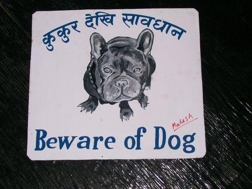 Mahesh.fr.bulldog