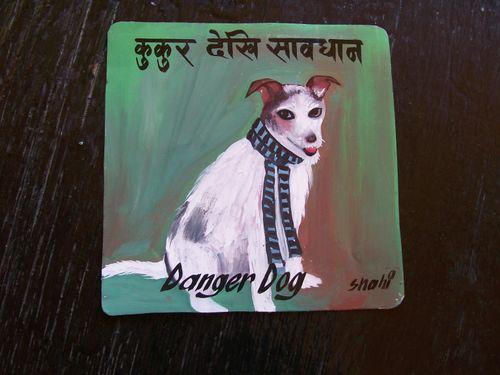 Jack Nelson Jack Russell Terrier Shahi