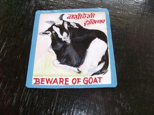 Goat.HariP_30