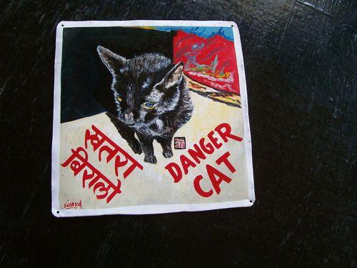 Cat.sagar_125
