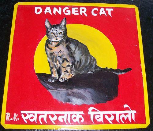 Cat.RamKrishna