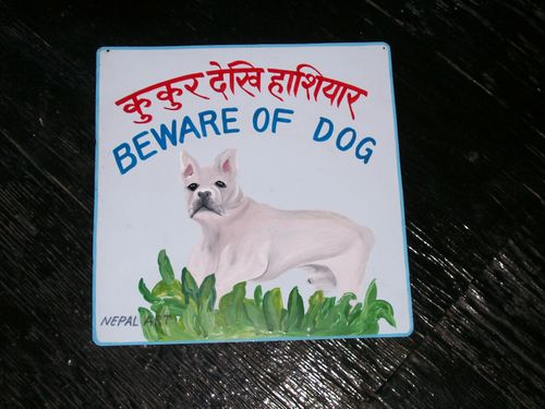 NepalArt French bulldog