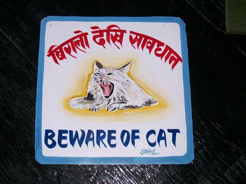 Shiva.cat
