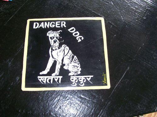 Boxer.Surya_28