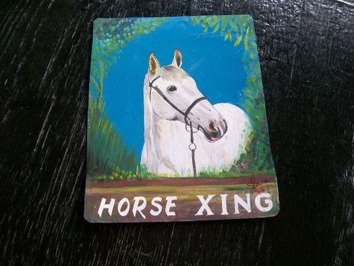 Horse.Sanjib_10