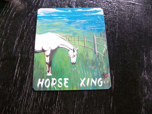 Horse.Sanjib_12