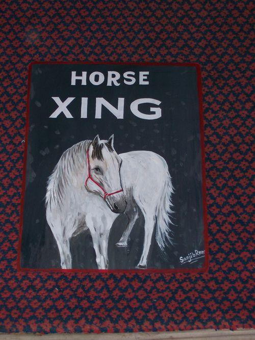 Sanjib.blackhorse