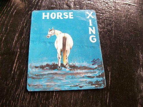 Horse.Sanjib_11