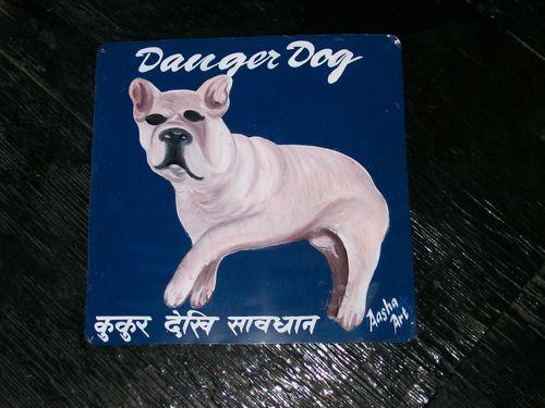 Aasha.fr.bulldog