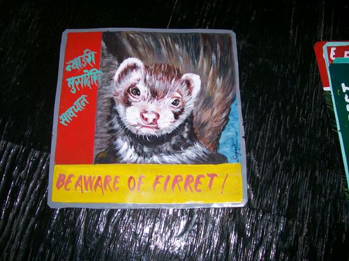 Ferret.HariP_5092