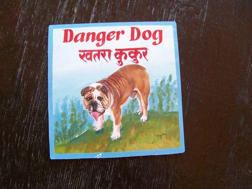 Brocco English Bulldog by Megh Raj