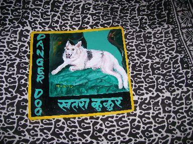 Sagar.Shepherd.Layla_289