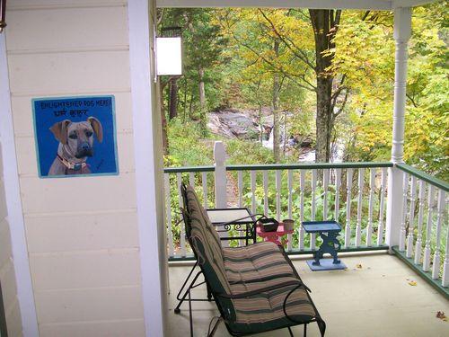 Waterfall House Dog