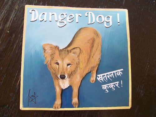 Dog.FrankZappa