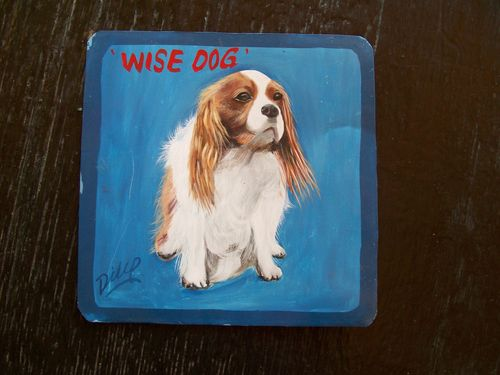 Georgie the King Charles Spaniel by Dilip