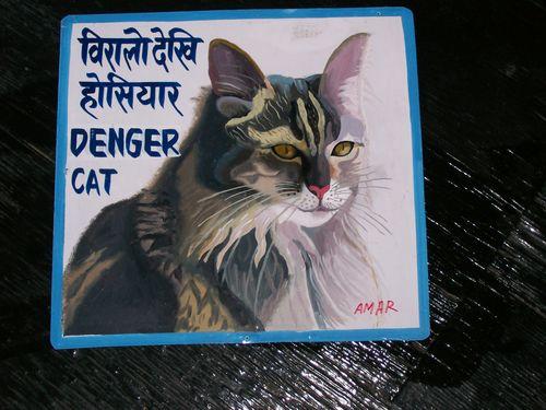 Amar.dengercat
