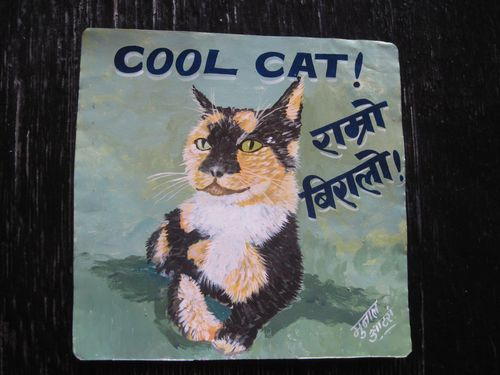 Jit Fisher Cat