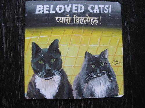 Megh Raj Maizy Demian Black Cats