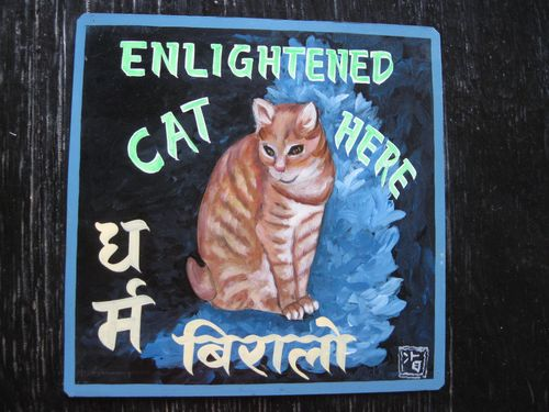 Sagar Ginger Cat Tony