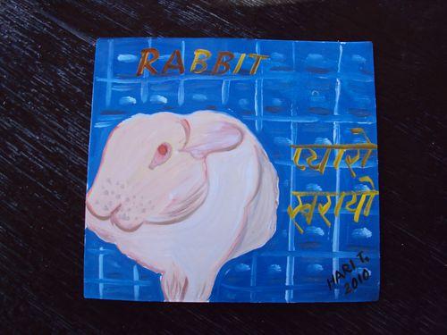 Rabbit.HariT
