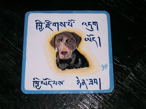 Shiva.millie