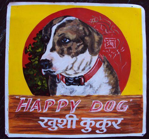 Corgi:Beagle Mix by Sagar