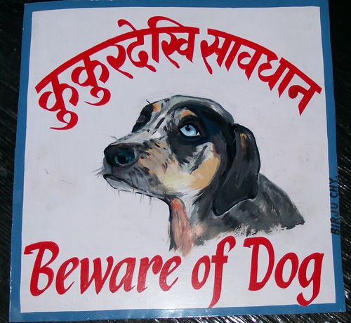 Folk art painting of Catahoula Leopard Dog from Nepal