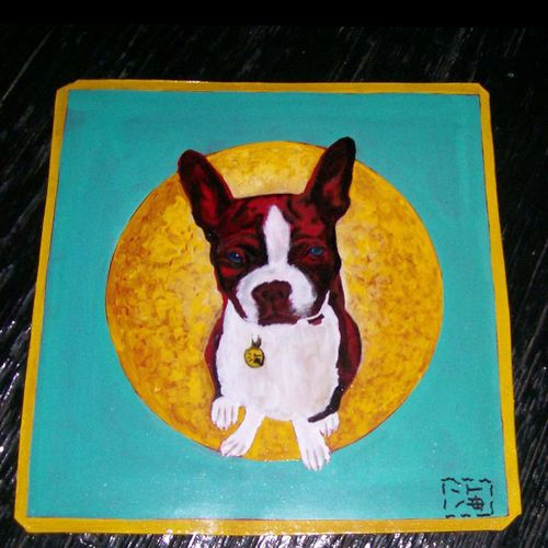 BostonTerrier by Sagar