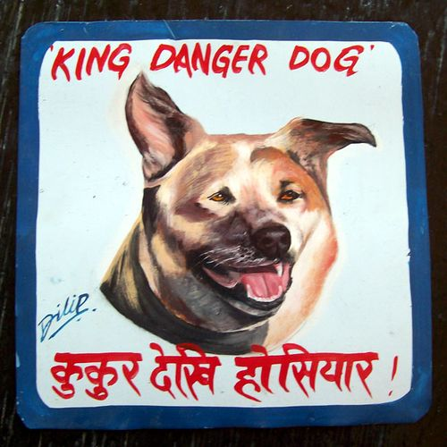 King Luke the Danger Dog by Dilip