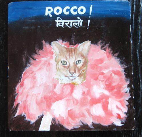 RoccoGingerCatMeghRaj