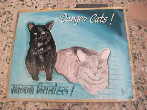 Folk art cats hand painted on metal