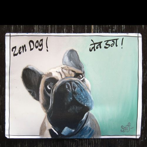 AubertFrenchBulldogSufraj