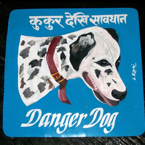 Dalmation by Lal Karki