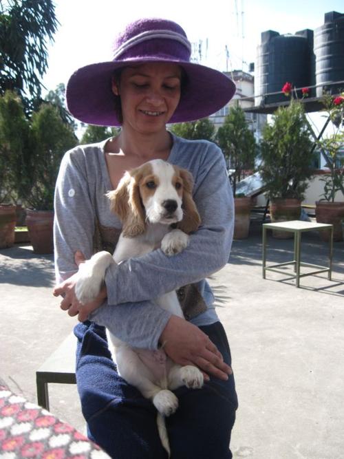 Kathmandu woman with Cocker Spaniel puppy