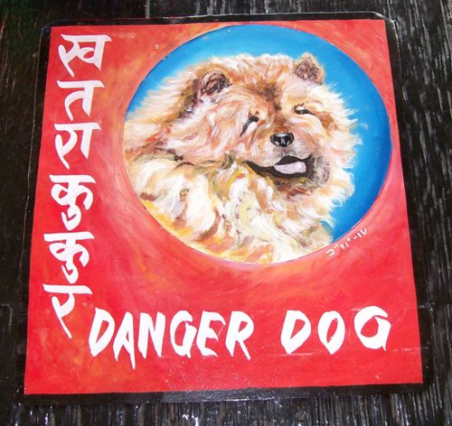 Folk art Chow hand painted on metal in Nepal