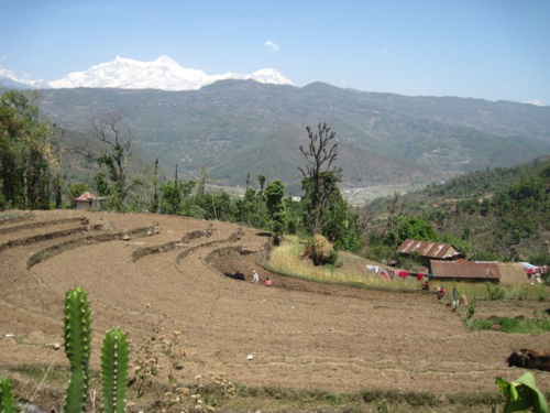 Farmers plowing their fields with the Annapurna Range in the background