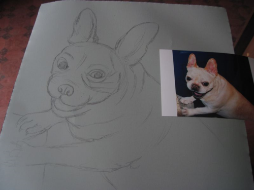 Folk art French Bulldog line drawing
