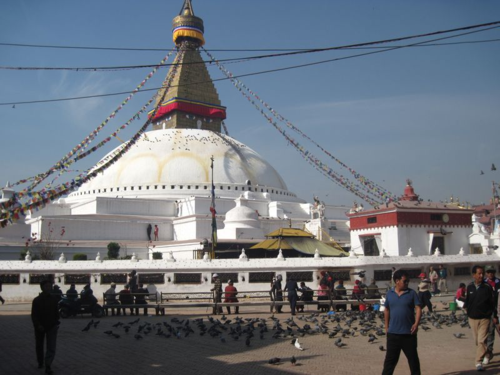 Morning around the Boudhanath Stupa